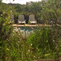piscine nature